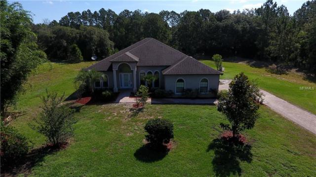 6647 Greengrove Boulevard, Clermont, FL 34714 (MLS #G5016137) :: RE/MAX Realtec Group