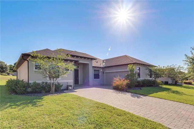 38925 Harborwoods Place, Lady Lake, FL 32159 (MLS #G5016160) :: The Duncan Duo Team