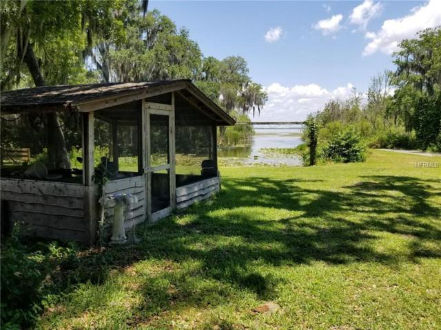 5616 Griffin View Drive, Lady Lake, FL 32159 (MLS #G5016204) :: Ideal Florida Real Estate