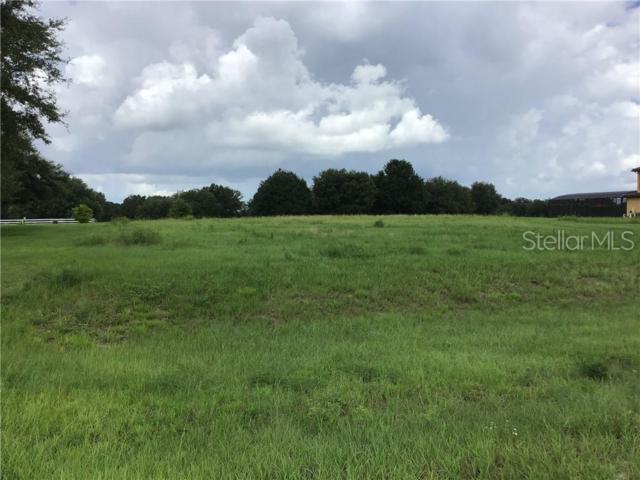 Eagle Run, Groveland, FL 34736 (MLS #G5016306) :: Team Bohannon Keller Williams, Tampa Properties