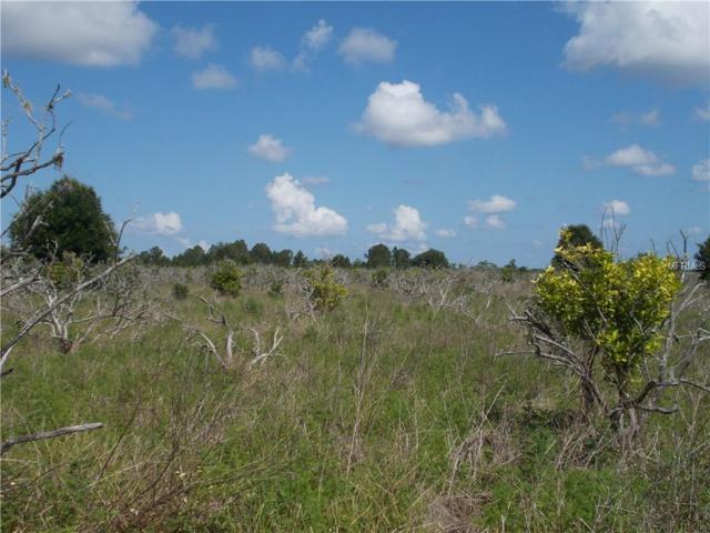 County Road 450, Umatilla, FL 32784 (MLS #G5016423) :: The Duncan Duo Team