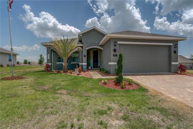 463 Bellissimo Place, Howey in the Hills, FL 34737 (MLS #G5016469) :: Team Bohannon Keller Williams, Tampa Properties