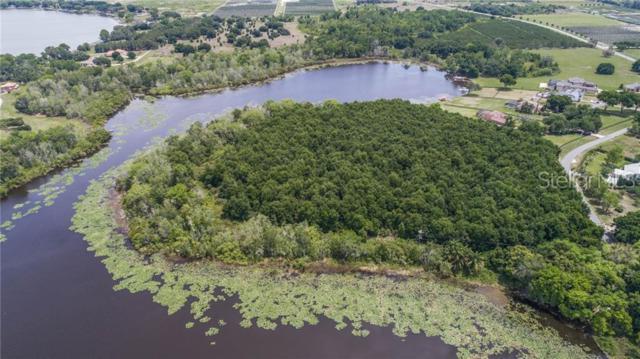 E Lake Jem Road, Mount Dora, FL 32757 (MLS #G5016572) :: Cartwright Realty