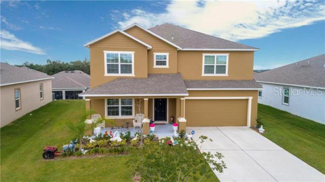 1248 Water Willow Drive, Groveland, FL 34736 (MLS #G5016618) :: Griffin Group