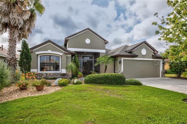 8884 Beacon Hill Avenue, Mount Dora, FL 32757 (MLS #G5016624) :: McConnell and Associates
