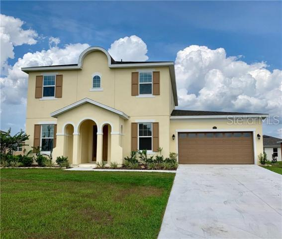 13516 Lake Yale View Loop, Grand Island, FL 32735 (MLS #G5016634) :: The Duncan Duo Team