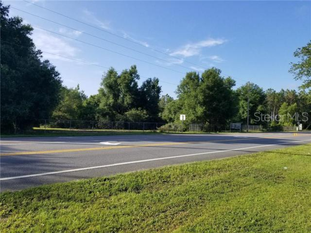 42012 State Road 19 Highway, Altoona, FL 32702 (MLS #G5016855) :: The Duncan Duo Team