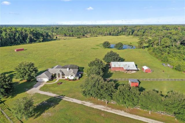23800 County Road 42, Paisley, FL 32767 (MLS #G5016891) :: Advanta Realty