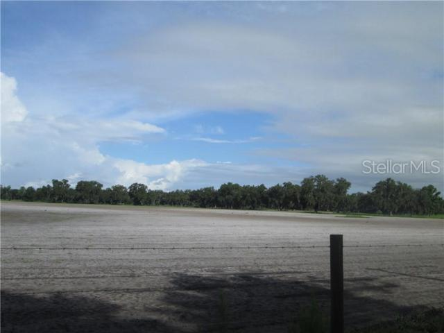 2258 County Road 737, Webster, FL 33597 (MLS #G5016920) :: Cartwright Realty