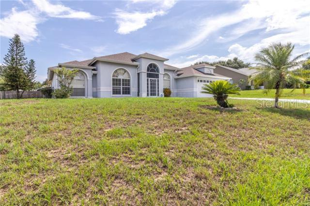 14801 Spruce Pine Lane, Clermont, FL 34711 (MLS #G5016946) :: RealTeam Realty
