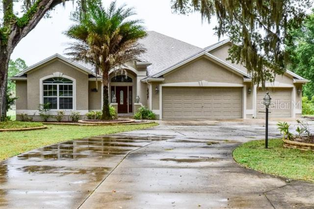 17289 SE 165TH Avenue, Weirsdale, FL 32195 (MLS #G5017056) :: Gate Arty & the Group - Keller Williams Realty