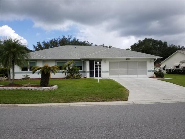 6145 Wilander Street, Leesburg, FL 34748 (MLS #G5017083) :: RealTeam Realty