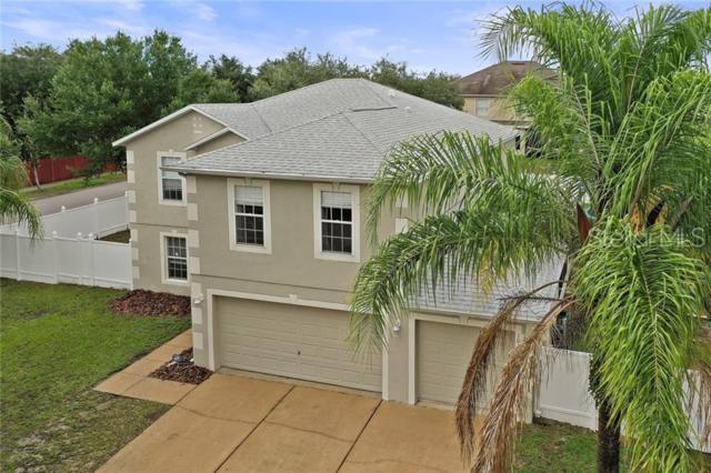 1016 Tawny Eagle Drive, Groveland, FL 34736 (MLS #G5017188) :: The Brenda Wade Team