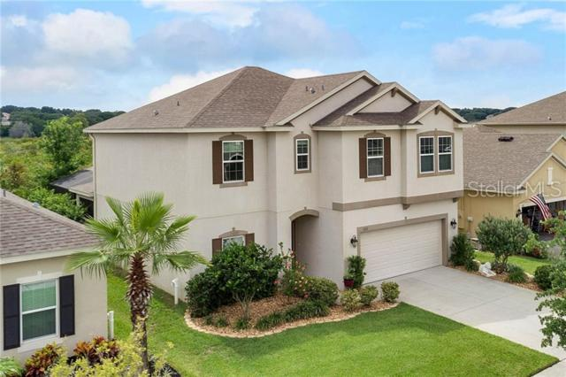1133 Whitewater Bay Drive, Groveland, FL 34736 (MLS #G5017198) :: The Duncan Duo Team
