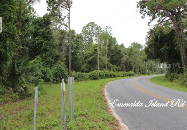 40926 Emeralda Island Road, Leesburg, FL 34788 (MLS #G5017318) :: Mark and Joni Coulter   Better Homes and Gardens