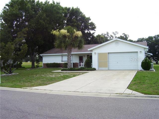 17860 SE 100 Terrace, Summerfield, FL 34491 (MLS #G5017353) :: Team Bohannon Keller Williams, Tampa Properties