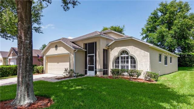 3876 Eversholt Street, Clermont, FL 34711 (MLS #G5017458) :: CENTURY 21 OneBlue