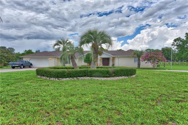 Address Not Published, Ocala, FL 34476 (MLS #G5017472) :: The Duncan Duo Team