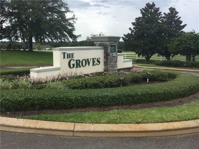 Lot 2 Moon River Drive, Groveland, FL 34736 (MLS #G5017564) :: Team Bohannon Keller Williams, Tampa Properties
