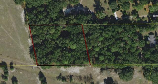 Fl, Lake Panasoffkee, FL 33538 (MLS #G5017591) :: GO Realty