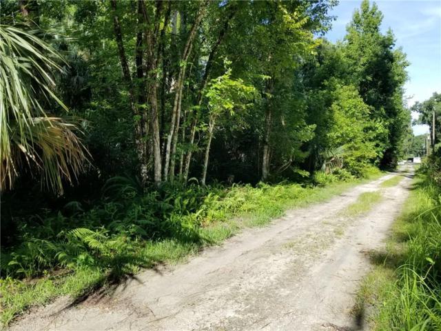 24118 Gobbler Road, Astor, FL 32102 (MLS #G5017610) :: Cartwright Realty