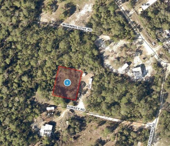 Turkey Road, Altoona, FL 32702 (MLS #G5017629) :: Homepride Realty Services