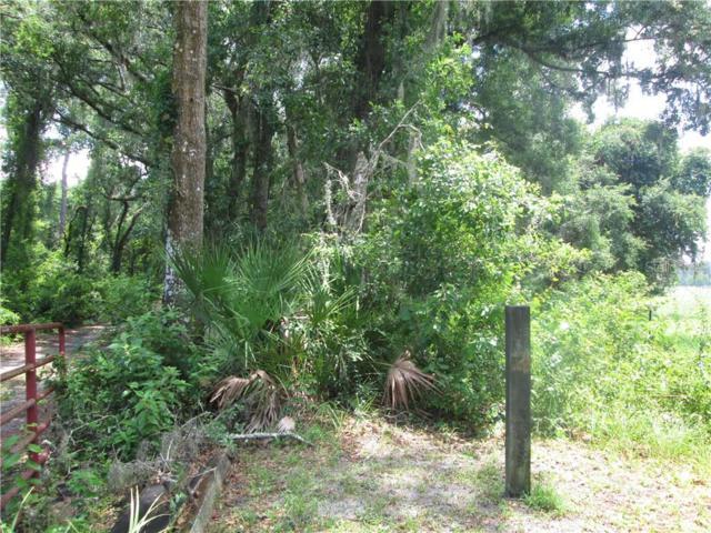Highway 301, Webster, FL 33597 (MLS #G5017729) :: Team 54