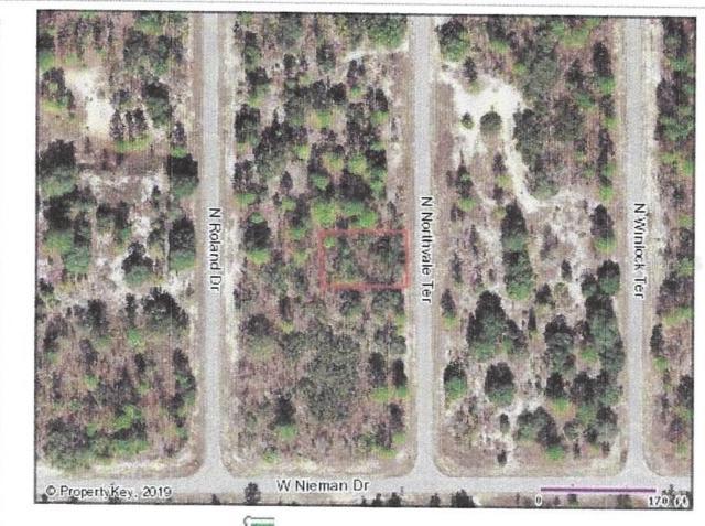 6548 N Northvale Terrace, Citrus Springs, FL 34433 (MLS #G5017759) :: Godwin Realty Group