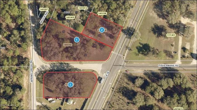 25035 County Road 42 Road, Paisley, FL 32767 (MLS #G5017771) :: Southern Associates Realty LLC