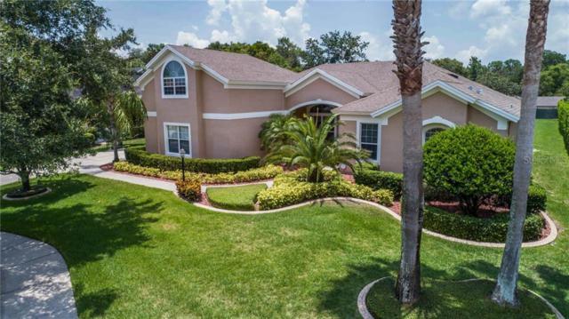 1023 Juliette Boulevard, Mount Dora, FL 32757 (MLS #G5017791) :: Cartwright Realty