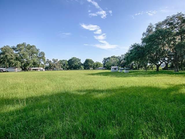 10200 Cr 749, Webster, FL 33597 (MLS #G5018254) :: Team Bohannon Keller Williams, Tampa Properties