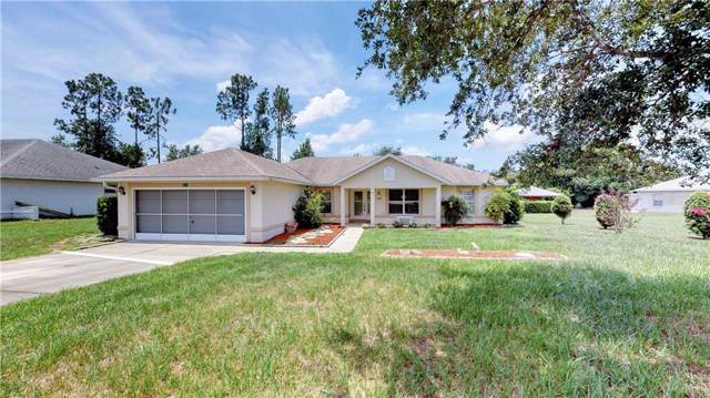 314 Dupont Circle, Howey in the Hills, FL 34737 (MLS #G5018319) :: Team Bohannon Keller Williams, Tampa Properties