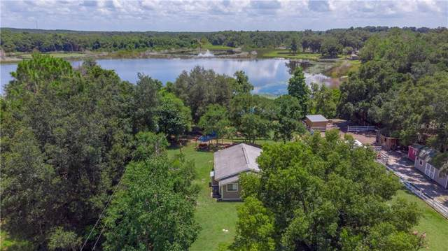 17245 SE 165TH Avenue, Weirsdale, FL 32195 (MLS #G5018328) :: Baird Realty Group