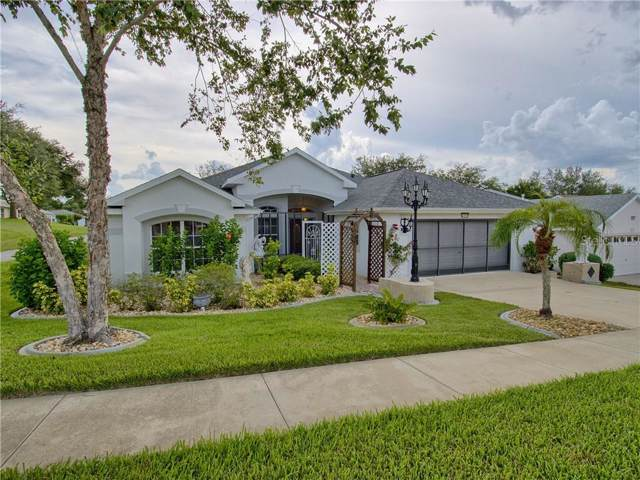 27019 Nature View Street, Leesburg, FL 34748 (MLS #G5018337) :: Griffin Group