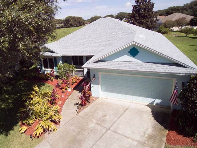 10317 Smokerise Lane, Clermont, FL 34711 (MLS #G5018380) :: White Sands Realty Group