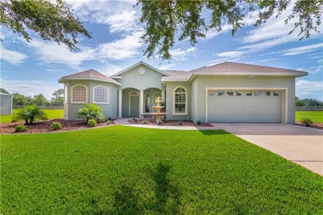 14149 Se 95 Avenue, Summerfield, FL 34491 (MLS #G5018400) :: Baird Realty Group