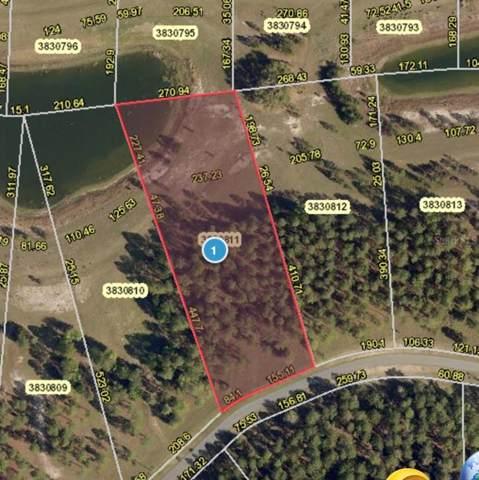 24111 Greenwood Crossing, Eustis, FL 32736 (MLS #G5018448) :: Sarasota Home Specialists