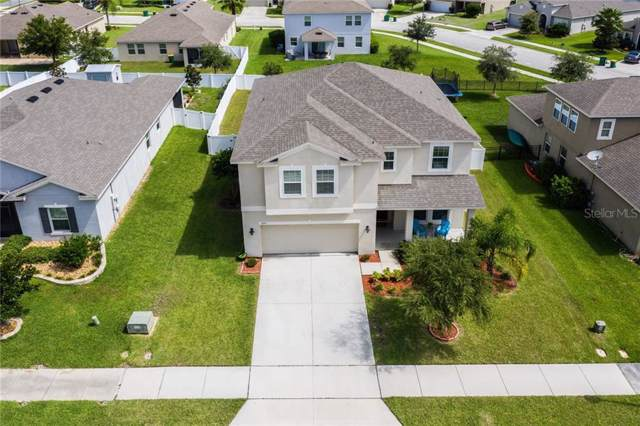 3135 Spicer Avenue, Grand Island, FL 32735 (MLS #G5018544) :: The Light Team