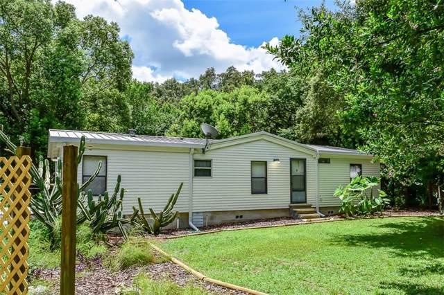 16257 SE 122ND Terrace, Weirsdale, FL 32195 (MLS #G5018573) :: Armel Real Estate