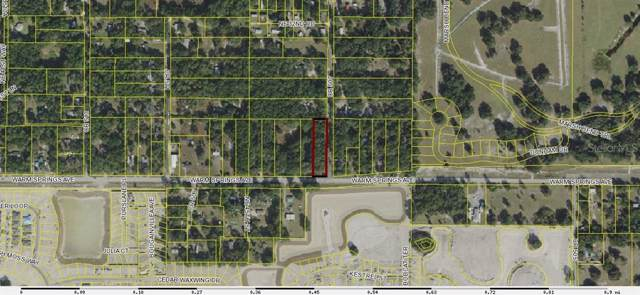 3020 County Road 507, Wildwood, FL 34785 (MLS #G5018823) :: Ideal Florida Real Estate