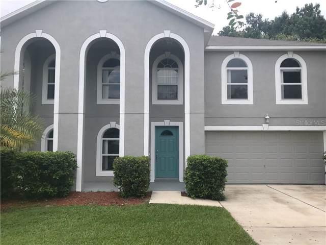 1033 Tawny Eagle Drive, Groveland, FL 34736 (MLS #G5019068) :: The Brenda Wade Team
