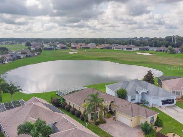 17817 SE 120TH Court, Summerfield, FL 34491 (MLS #G5019108) :: Team Bohannon Keller Williams, Tampa Properties