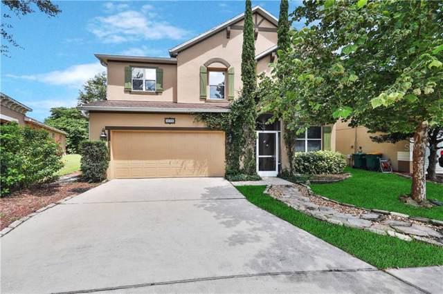 5036 Gandross Lane, Mount Dora, FL 32757 (MLS #G5019317) :: Ideal Florida Real Estate