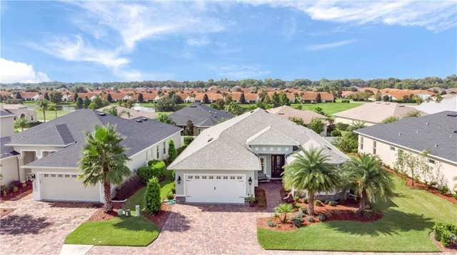 5019 Belted Kingfisher Drive, Oxford, FL 34484 (MLS #G5019352) :: Team Bohannon Keller Williams, Tampa Properties