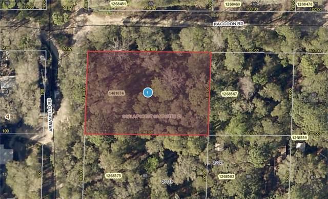 Raccoon Road, Altoona, FL 32702 (MLS #G5019406) :: Homepride Realty Services
