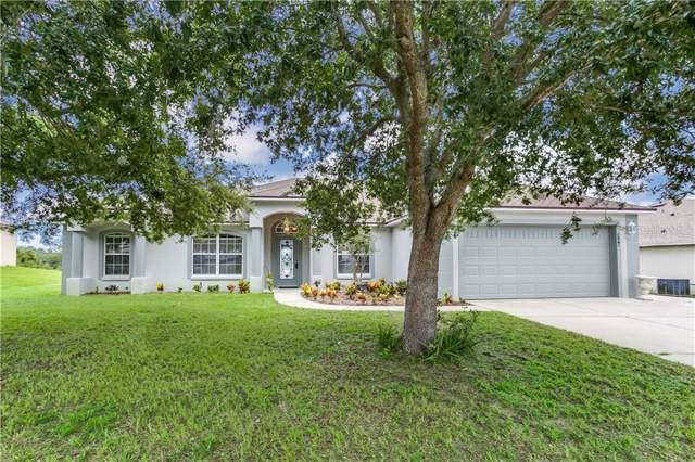 206 Magellan Circle, Minneola, FL 34715 (MLS #G5019478) :: White Sands Realty Group