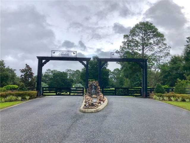 41517 Saddle Ridge, Weirsdale, FL 32195 (MLS #G5019520) :: Armel Real Estate