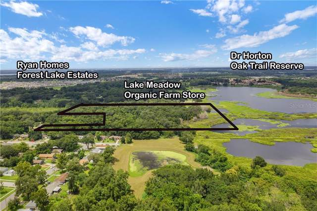 Address Not Published, Ocoee, FL 34761 (MLS #G5019626) :: Cartwright Realty