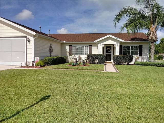 13873 SE 86TH Circle, Summerfield, FL 34491 (MLS #G5019636) :: Ideal Florida Real Estate