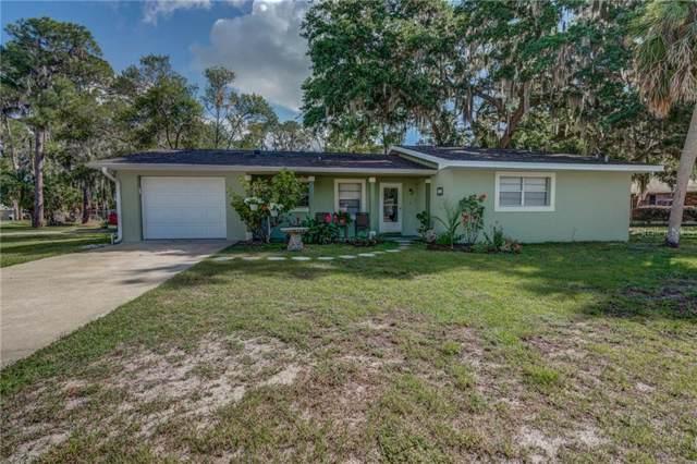 410 E Oak Hill Road, Mount Dora, FL 32757 (MLS #G5019667) :: Cartwright Realty